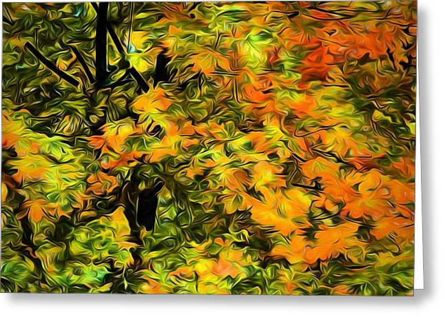 Turning Leaves Digital Art Greeting Cards - Wind in the Maples Greeting Card by Richard Farrington