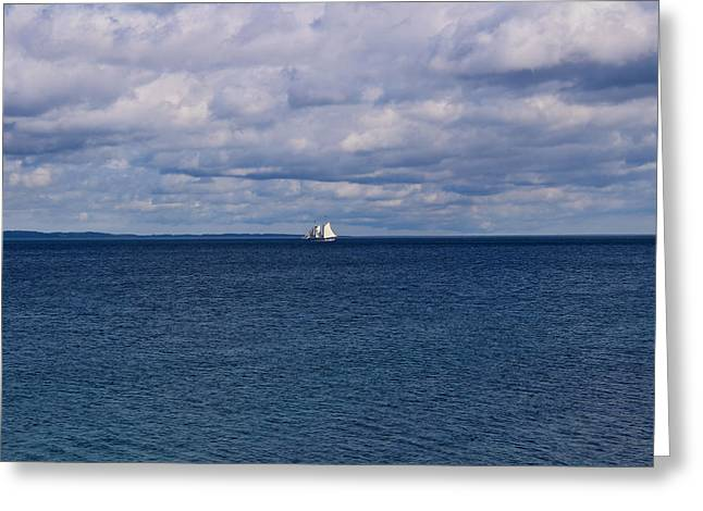 Blue Sailboats Greeting Cards - Wind in the Sails Greeting Card by Rachel Cohen