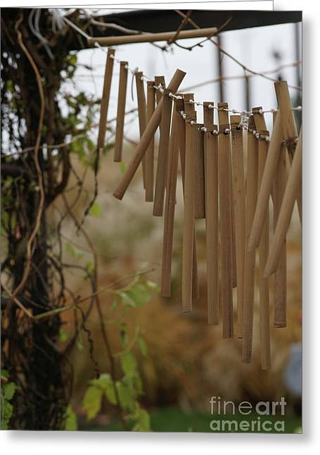 Bamboo Fence Greeting Cards - Wind Song - 3 Greeting Card by Linda Knorr Shafer