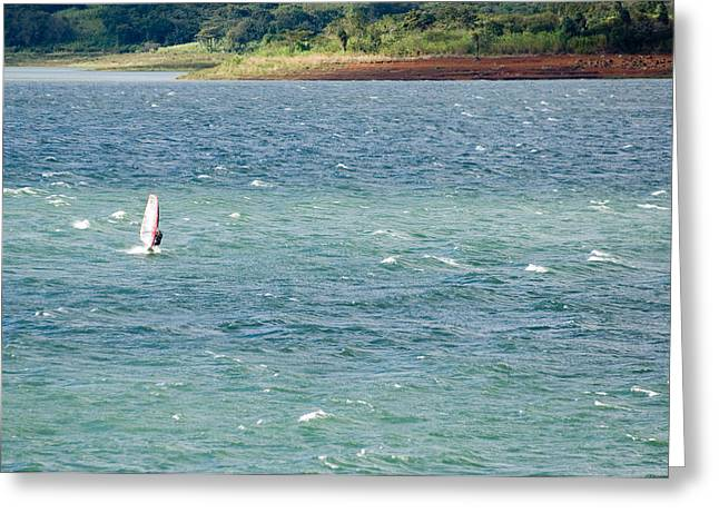 Wind Surfer Greeting Cards - Wind Surfer In A Lake, Arenal Lake Greeting Card by Panoramic Images