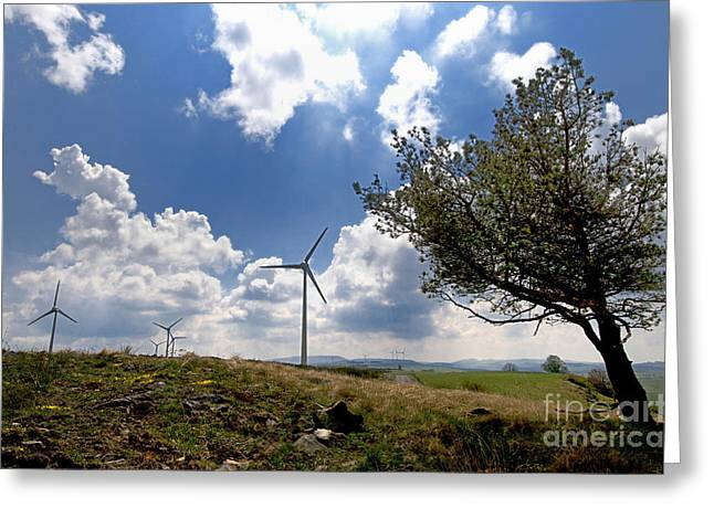 Alternative Energy Greeting Cards - Wind turbine and tilted tree isolated in the countryside. Greeting Card by Bernard Jaubert