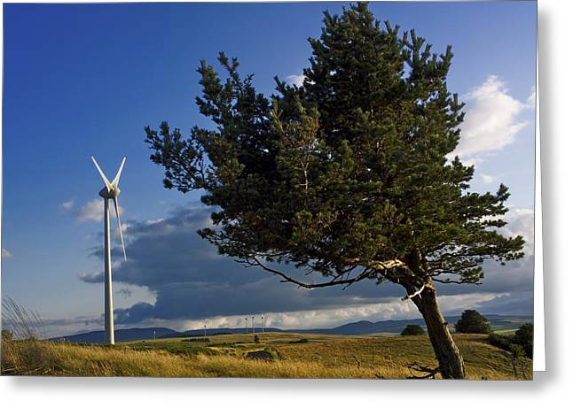 Scrubby Greeting Cards - Wind turbine and tree on the plateau of  cezallier. Auvergne. France. Greeting Card by Bernard Jaubert