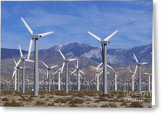 Geographical Locations Greeting Cards - Wind Turbines, Coachella Valley Greeting Card by Dave King / Dorling Kindersley