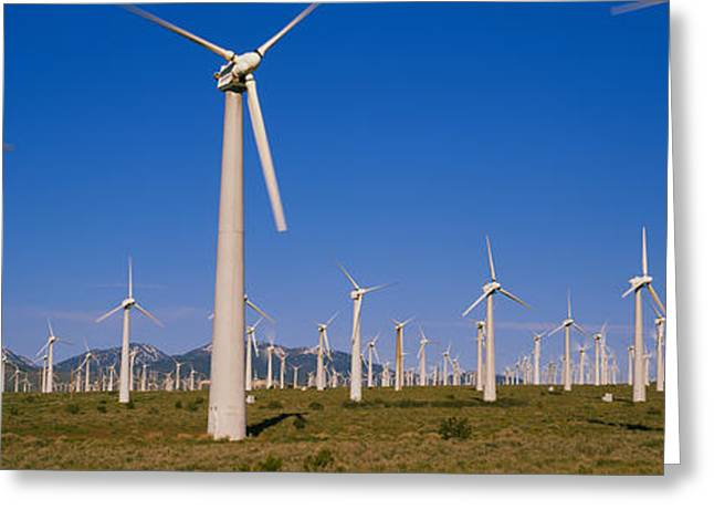 Environmental Conservation Greeting Cards - Wind Turbines In A Field, Mojave Greeting Card by Panoramic Images