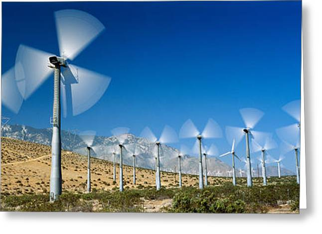 Wind Turbines Spinning In A Field, Palm Greeting Card by Panoramic Images