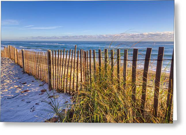 Florida House Greeting Cards - Wind Whipped Greeting Card by Debra and Dave Vanderlaan