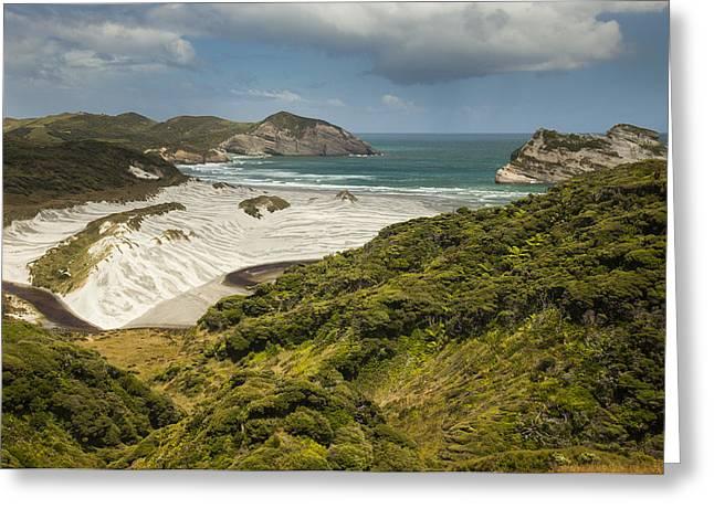 Beach Photos Greeting Cards - Windblown Trees Dunes Wharariki Beach Greeting Card by Colin Monteath
