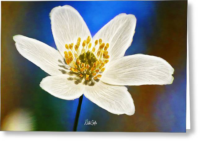 Waiting Room Digital Greeting Cards - Windflower Whispers Greeting Card by Nikki Marie Smith