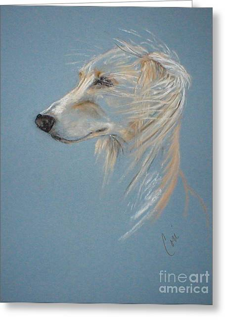 Hound Pastels Greeting Cards - Windhound Greeting Card by Cori Solomon