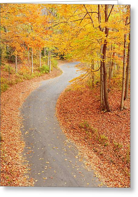 Indiana Autumn Greeting Cards - Winding alley in fall Greeting Card by Alexey Stiop