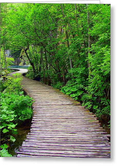 Winding Path Greeting Card by Ramona Johnston