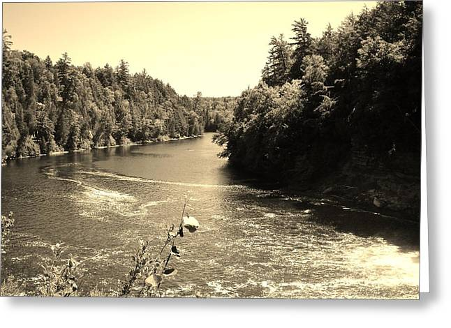 Easy Going Greeting Cards - Winding Peaceful River Greeting Card by Jennifer McGuire