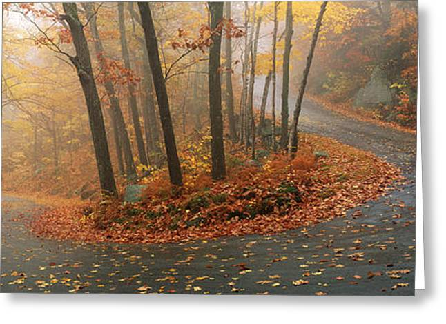 Fallen Leaf Greeting Cards - Winding Road Through Mountainside In Greeting Card by Panoramic Images