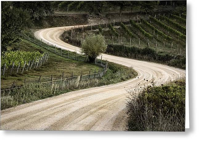Radda In Chianti Greeting Cards - Winding Through The Vineyard Greeting Card by Steven Greenbaum