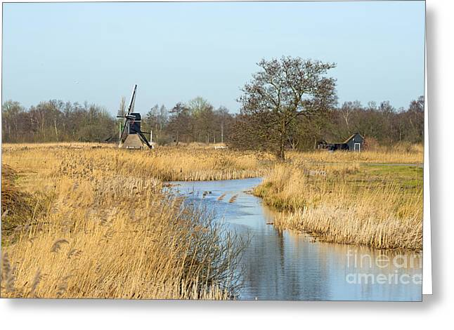 Reed Bed Greeting Cards - Windmill along a stream through wetland Greeting Card by Jan Marijs