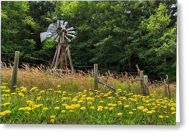 Aermotor Greeting Cards - Windmill And Flowers Greeting Card by James Eddy