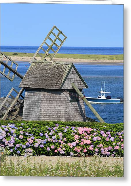 Chatham Greeting Cards - Windmill and Hydrangeas Chatham Waterfront Cape Cod Greeting Card by John Burk