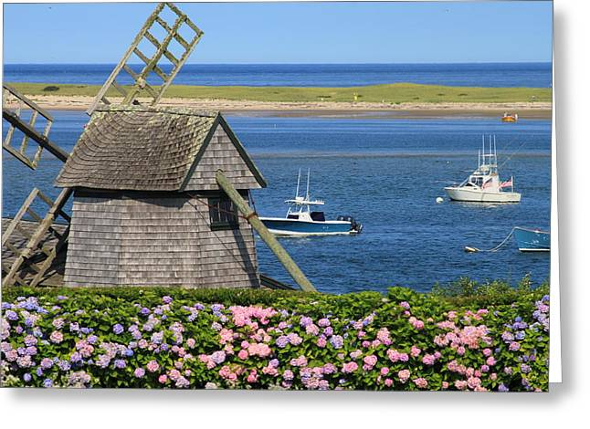 Chatham Greeting Cards - Windmill and Hydrangeas on Chatham Waterfront Cape Cod Greeting Card by John Burk