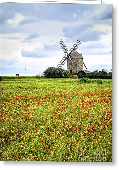 Mills Photographs Greeting Cards - Windmill and poppy field in Brittany Greeting Card by Elena Elisseeva