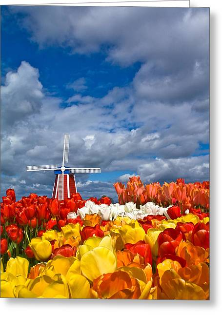 Woodburn Greeting Cards - Windmill and Tulips Greeting Card by Patricia  Davidson