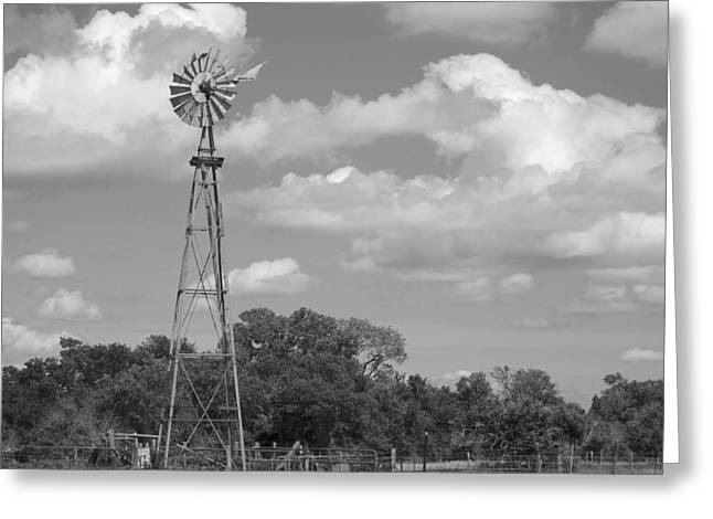 Windmill And Tree Greeting Cards - Windmill black and white photograph  Greeting Card by Ann Powell