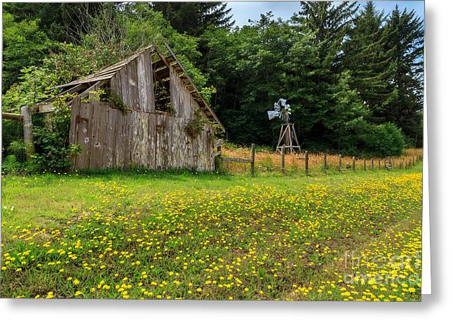 Aermotor Greeting Cards - Windmill Flowers And A Barn Greeting Card by James Eddy