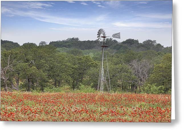 Wild Flowers Of Texas Greeting Cards - Windmill in a field of Texas Wildflowers Greeting Card by Rob Greebon