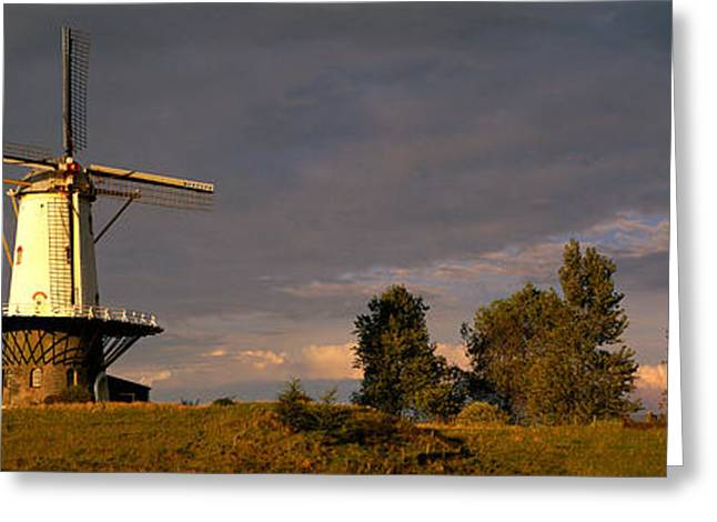 Windmill Veere Nordbeveland The Greeting Card by Panoramic Images