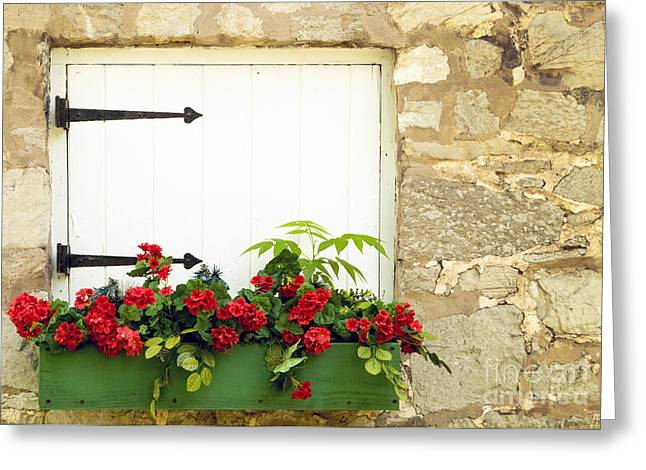 Flower Boxes Greeting Cards - Window Box Greeting Card by Paul W Faust -  Impressions of Light