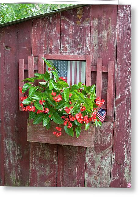 Window Box Planter With Red Dragon Wing Greeting Card by Richard and Susan Day