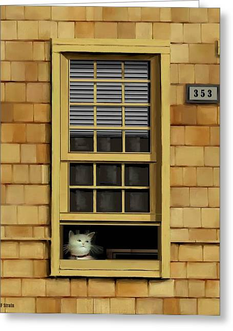 Kitten Prints Pastels Greeting Cards - Window Cat    No.1 Greeting Card by Diane Strain