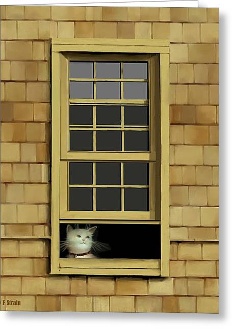 Kitten Prints Pastels Greeting Cards - Window Cat    No.4 Greeting Card by Diane Strain