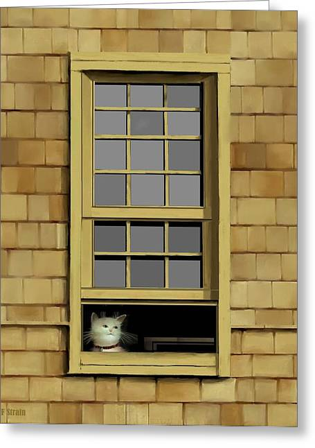 Kitten Prints Pastels Greeting Cards - Window Cat    No.6 Greeting Card by Diane Strain