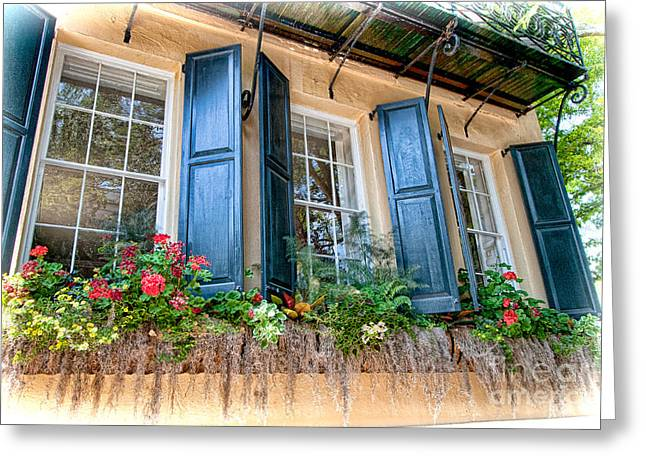 Flower Boxes Greeting Cards - Window Dressing Greeting Card by Dan Carmichael