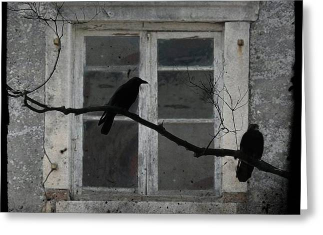 Two Crows Greeting Cards - Window Dressing Greeting Card by Gothicolors Donna Snyder