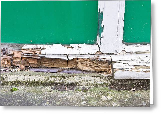 Broken Windows Greeting Cards - Window frame rot Greeting Card by Tom Gowanlock
