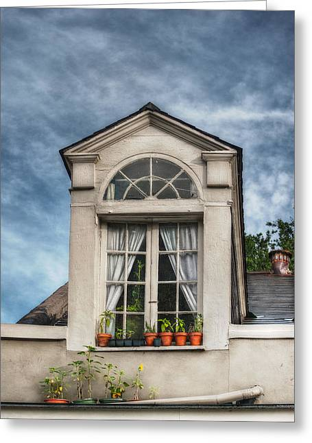 Brenda Bryant Photography Greeting Cards - Window Garden Greeting Card by Brenda Bryant