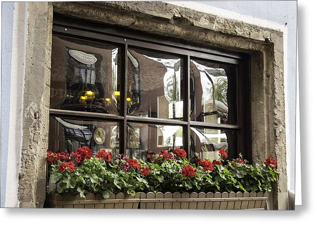Historic Statue Greeting Cards - Window in Cologne Greeting Card by Teresa Mucha