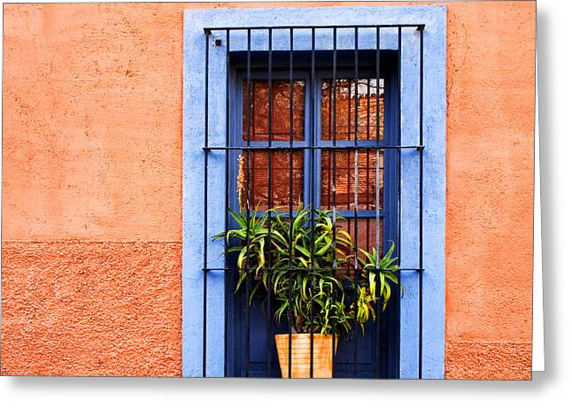 Rectangles Greeting Cards - Window in San Miguel de Allende Mexico Square Greeting Card by Carol Leigh