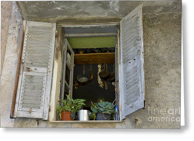 Window Decor Greeting Cards - Window Life 1 Greeting Card by Sophie De Roumanie