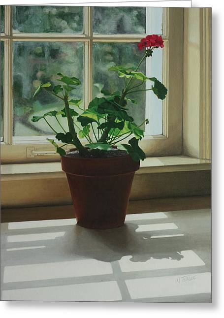 Geranium Greeting Cards - Window Light Geranium Greeting Card by Nancy Teague