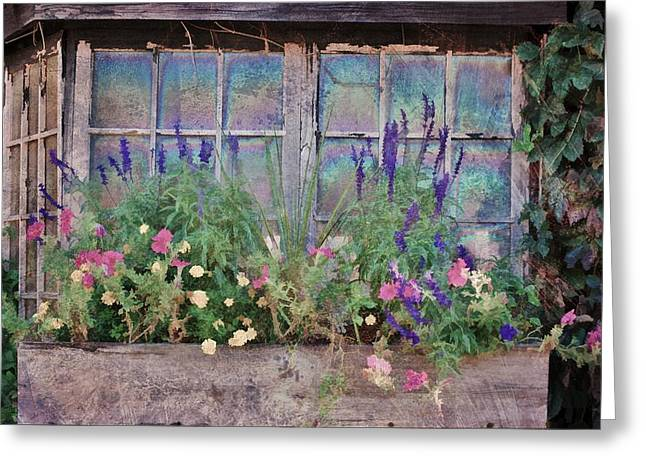 Red Geraniums Mixed Media Greeting Cards - Window Of Colors Greeting Card by Todd and candice Dailey