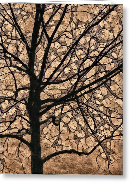 Bare Trees Greeting Cards - Windowpane Tree in Autumn Greeting Card by Carol Leigh