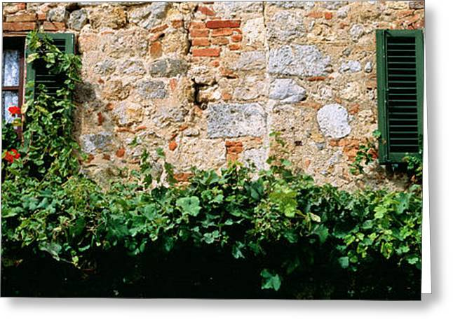 Flower Boxes Greeting Cards - Windows, Monteriggioni, Tuscany, Italy Greeting Card by Panoramic Images