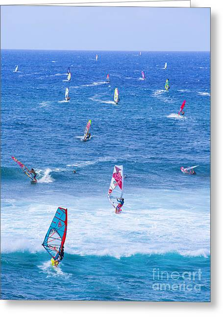 Daredevil Greeting Cards - Windsurfers on Maui Greeting Card by Diane Diederich