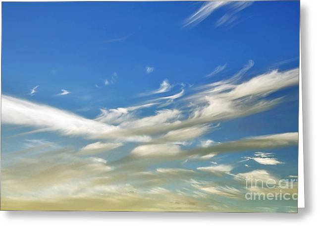 Wind Direction Greeting Cards - Windswept 5 - Convergence  Greeting Card by Kaye Menner