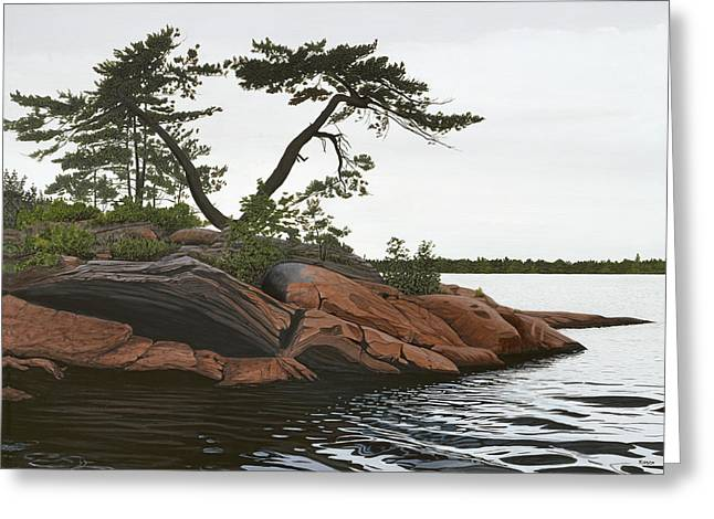 Lakeshore Greeting Cards - Windswept Greeting Card by Kenneth M  Kirsch