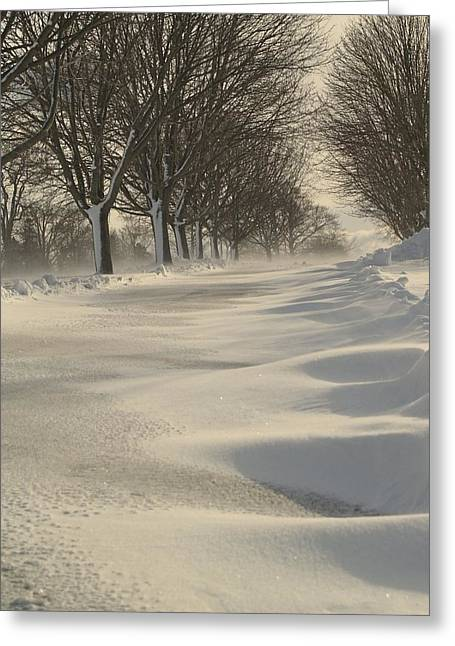 Snow Drifts Greeting Cards - Windswept Snow Greeting Card by Patricia McKay
