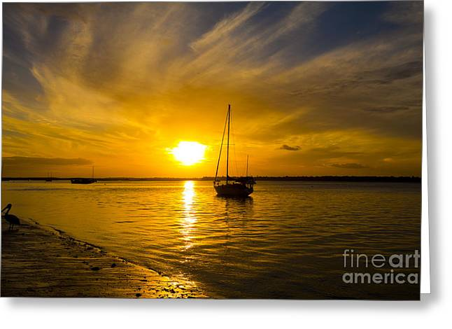 Windswept Sunset Sail Greeting Card by Andrew Wood