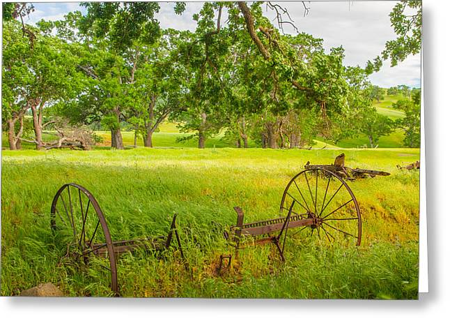 Landsape Greeting Cards - Windy Afternoon Greeting Card by Marc Crumpler